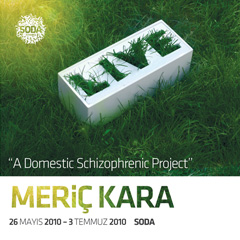 MERİÇ KARA / A Domestic Schizophrenic Project / 26.05.2010-03.07.2010