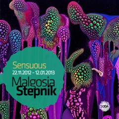 Malgosia Stepnik / Sensuous22.11.2012 - 12.01.2013