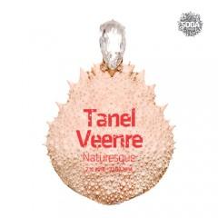Tanel Veenre / Naturesque7.12.2013 - 22.02.2014
